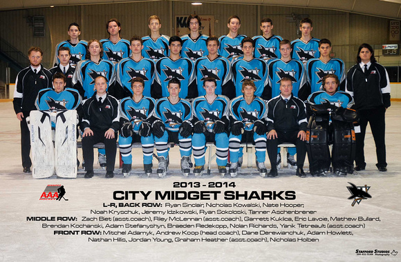 Stafford Studios Winnipeg Team Photography Sample